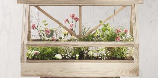 Rumah Kaca kecil yang dapat di masukkan tanaman