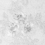 wallpaper-1