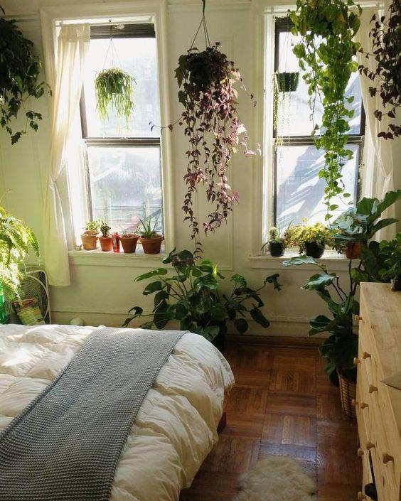 hipwee-indoorplant11