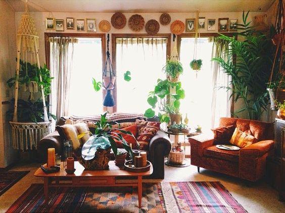 hipwee-indoorplant3
