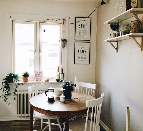hipwee-indoorplant6