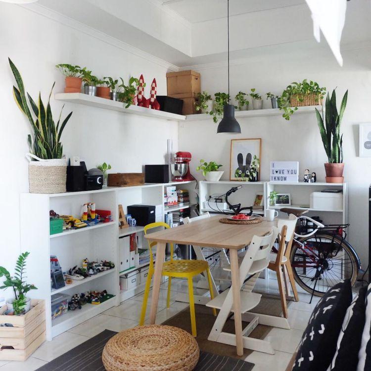 hipwee-indoorplant9-750x750