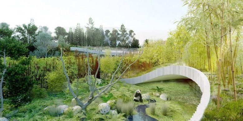 Rumah Panda Kopenhagen Akan Dibangun Tahun Ini