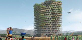 Mashambas Skyscraper, Konsep Sawah Di Gedung Vertikal