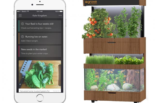 Berkebun Di Rumah Lewat Smartphone Dengan Grove Ecosystem