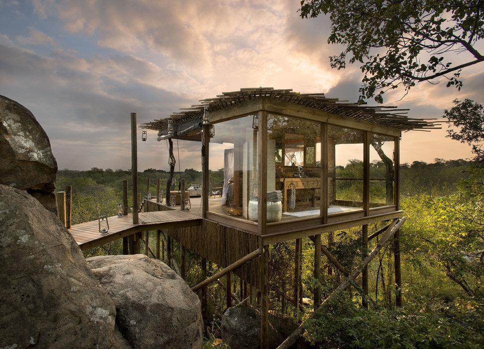 KEREN! Begini Penampakan 5 Hotel Dengan Tema Rumah Pohon
