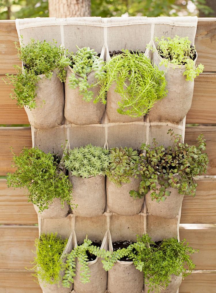 Membuat kebun kecil dipekarangan rumah