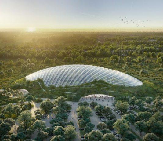 Keren! Prancis Bakal Membuat Hutan Tropis Seluas 2 Hektar!