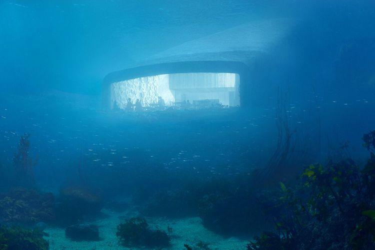 Tunggu Kehadiran Restoran Bawah Laut Pertama Di Eropa