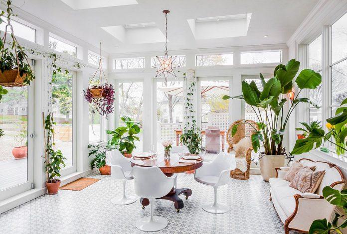 6 Tanaman Indoor yang Bisa Membersihkan Udara dan Menaikkan Moodmu